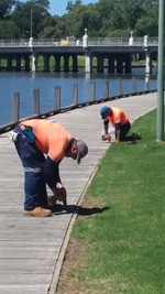 Boardwalk maintenance.jpg