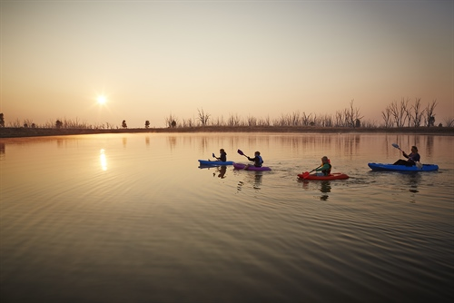 Image of people canoeing at Winton Wetlands